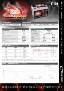 DMI FT100 pdf