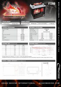 DMI FT200 pdf