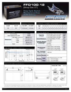 FFD100 12 pdf