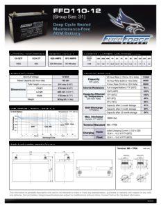 FFD110 12 pdf