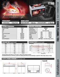 FT100 pdf
