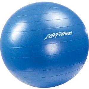 Stability Ball Blue 65cm L