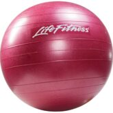Stability Ball Red 55cm L